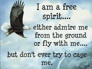 I am a free spirit...Either admire me from the ground. Or fly with me...But don't ever try to cage me.